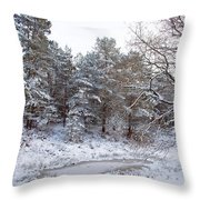 Winter On The Chase Throw Pillow