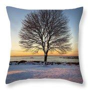 Winter On The Coast Throw Pillow