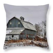 Winter On The Farm 2 Throw Pillow