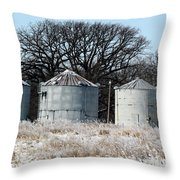 Winter On The Prairie Number 1 Throw Pillow