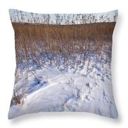 Winter On The Prairie Throw Pillow