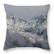 Winter On The Way Throw Pillow