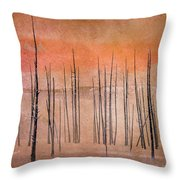 Winter Orange  7913orange Throw Pillow