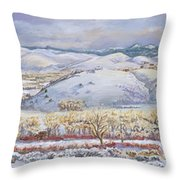 Winter Panorama From The River Mural Throw Pillow