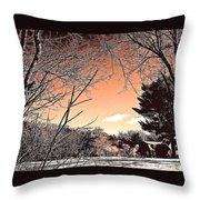 Winter Pastel Throw Pillow