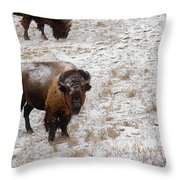 Winter Pasture Throw Pillow