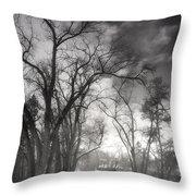 Winter Pathways Throw Pillow