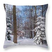 Winter Perfection Throw Pillow