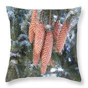 Winter Pine Cones Throw Pillow