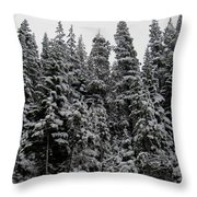 Winter Pine Spires Throw Pillow