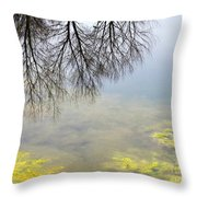 Winter Pond Reflections Throw Pillow