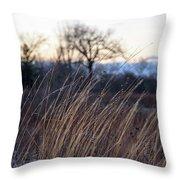 Winter Prairie Grass At Dusk Throw Pillow