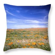 Winter Rainfall Throw Pillow