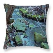 Winter Ravine Throw Pillow