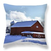Winter Red 2010 Throw Pillow