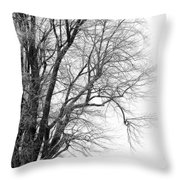 Winter Red And White  Throw Pillow