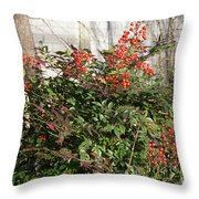 Winter Red Berries Throw Pillow