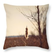 Winter Remnants Throw Pillow