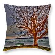 Winter Retreat Throw Pillow
