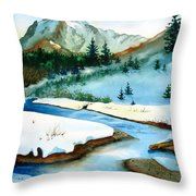 Winter Retreating Throw Pillow