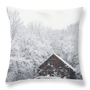 Winter Ride Snowy Pond Throw Pillow