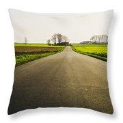 Winter Road Ground Level Throw Pillow