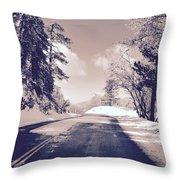Winter Roads Throw Pillow