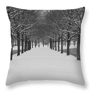 Winter Rows Throw Pillow