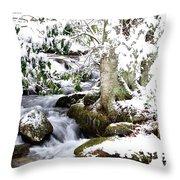 Winter Rushing Stream Throw Pillow