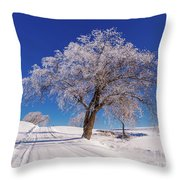 Winter Scene Genessee, Id Throw Pillow