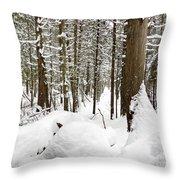 Winter Scene Print Throw Pillow