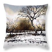 Winter Scene Stainland Throw Pillow