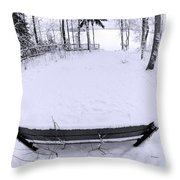 Winter Seat 2 Throw Pillow