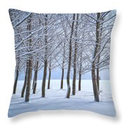 Winter Sentinels Throw Pillow