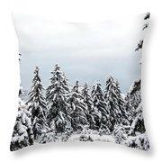 Winter Shangri-la Throw Pillow