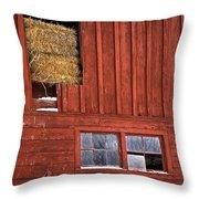Winter Shelter Throw Pillow