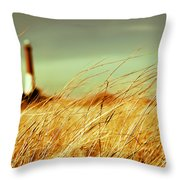Winter Shore Breeze Throw Pillow