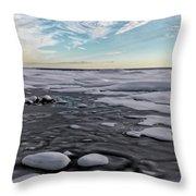 Winter Shoreline Throw Pillow