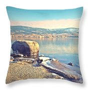 Winter Silence Throw Pillow