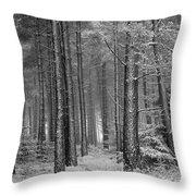 Winter, Slaley Woods Throw Pillow