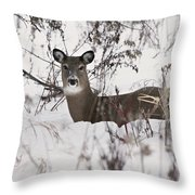 Winter Slumber Throw Pillow