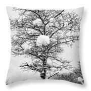 Winter Solace Throw Pillow