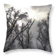 Winter Solstice Utah Throw Pillow