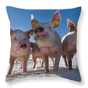 Winter Sports Throw Pillow by Robert Lacy