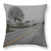Winter Still Holds On In Early Spring Throw Pillow