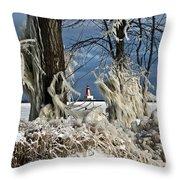 Winter Storm Ashley 2015 #2 Throw Pillow