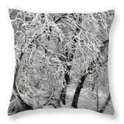 Winter Storm Skylar Throw Pillow