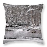 Winter Stream And Woods Throw Pillow