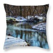 Winter Stream, Pa Throw Pillow