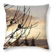 Winter Sun 3 Throw Pillow